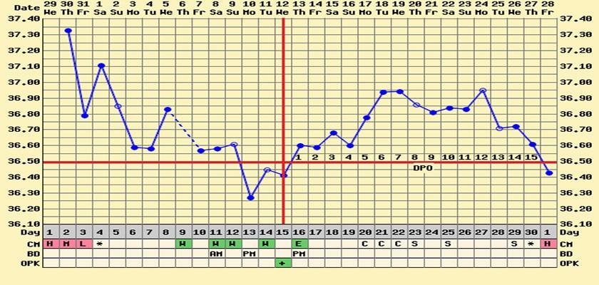 ciklus koji se završava menstruacijom