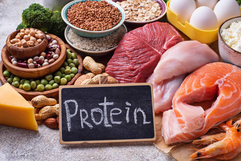 Dobri izvori proteina