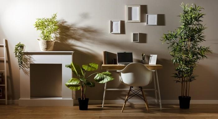 Biljke doprinose kvalitetu vazduha u prostoriji.